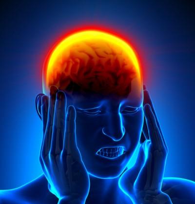 Serotonin, Endorphins, Dopamine & Hormones