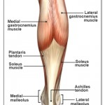 Massage for Calf Injuries