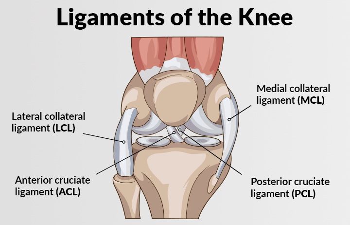 Knee Ligament Injuries (ACL, PCL, MCL, LCL)