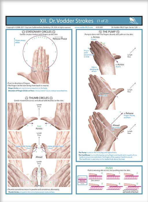 This image has an empty alt attribute; its file name is Lymphatic-Drainage-2-1.jpg